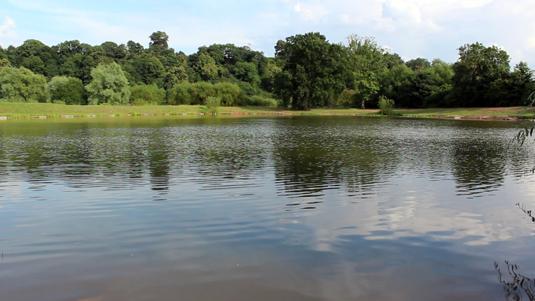 arena-lake