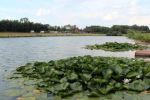 match-lake