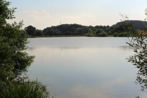 speci-lake